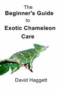 Chameleon books cover