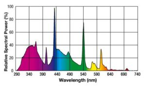 UV light for chameleons showing wavelength